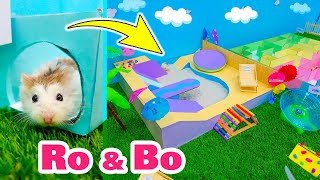 Roborovski Hamsters in a Water Park with a Small Cardboard Labyrinth and Sand Pool 🌴 Come and Enjoy