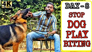 Quickest Way To Stop Puppy / Dog Play Biting  | German Shepherd Play Biting Problem (Hindi)