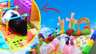 Cute Hamster in LEGO Obstacle Course !! Super Hugo Lego Maze by Life of Pets Hamham