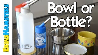 WATER BOTTLE OR WATER BOWL? | Hamsters & Other Rodents