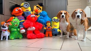 Dogs SURPRISED by Famous Puppets | Funny Dogs Louie & Marie