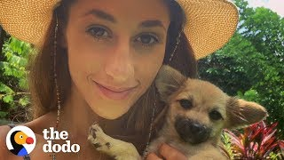 This Woman On Vacation Stopped Everything to Save a Sick Puppy in Bali   The Dodo