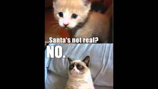 GRUMPY CAT PART 2! Best Meme / Memes Cute Cats