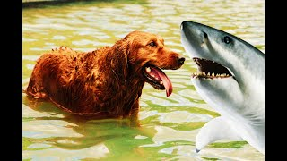 Baby Dogs – Cute and Funny Dog Videos Compilation #Animals 🐶