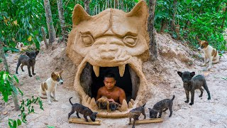 Newborn Puppies Rescued And Build Heaven Underground Dog House And Red Fish Pond