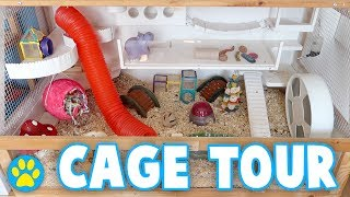 Colourful Hamster Cage Tour | The Bunsen Hamster Cage