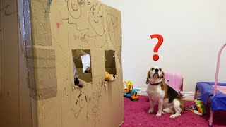 Our Family Playing with Cute Dogs in a Big Box | Fun with Beagles
