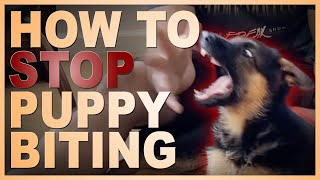 How to Easily Teach Your Puppy To STOP Biting You.