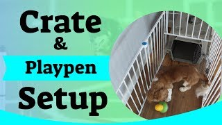 Puppy Crate Setup – Using A Puppy Playpen