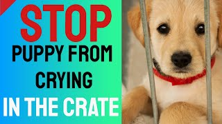 Stop Puppy From Crying in the Crate – Crate Training Tips