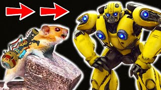 🐹🤖BUMBLEBEE HAMSTER Obstacle Course Maze with Traps 😱 Warrior Hamster with Life Of Pet Hamham