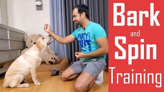 How to Train your Dog/Puppy to Bark (Speak) and Spin | Easy Home Training