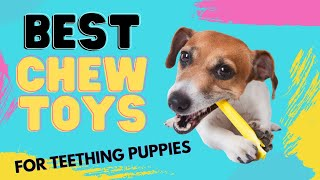 Best Puppy Chew Toys for Teething