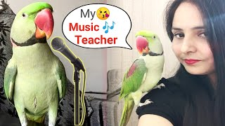 Talking Parrot Singing and Dancing With Mummy – – FUNNY BIRDS COMPLILATION