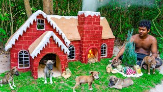 Build Dog House for My Puppies to Celebrate Christmas House