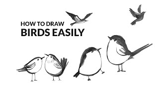 How To Draw Cute Birds Easy | Watercolor Bird Painting
