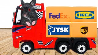 FUNNY CARTOON #13 | Cute Hamster Pretend Plays with truck and decorate DRESS UP Hamster House