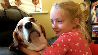 How our Cute Dogs Love our Little Girl   Charlie the Beagle and Lilly