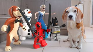 TOP 50 Animations In Real Life vs Funny Dogs Prank
