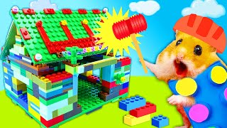 Hamster Makes DIY Colorful Lego Playhouse Traps Maze In Hamster Stories