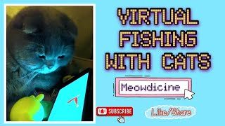 #CATS#CUTECATS#CATLOVERS#FUNNYCATS VIRTUAL FISHING WITH CATS