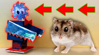 😱 🤖 Saw Robot vs Hamster Maze with Traps 🐹 Obstacle course in Hamsters Show