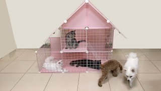 DIY House For Pomeranian Poodle Puppies & Kittens | How To Make House For Dogs Cats | MR PET