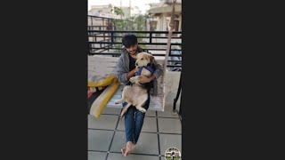 Playing with Milu 🐶 || dog life || animal vlog || cute dogs || dogs || love animals