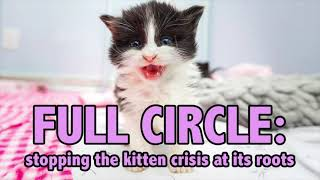 How to Save the MOST Kittens–Using the Full Circle Strategy!