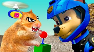 PAW Patrol Moto Pups Rescue Hamster – Funny Hamster Cartoon by Life Of Pets Hamham