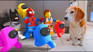 Animations in REAL LIFE vs Funny Dogs Compilation