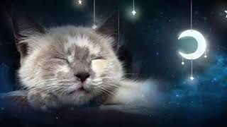 Relaxing Lullaby for Cat and Kitten 🐱💤 (with Cat purring sounds) – CAT MUSIC – 1 HOUR