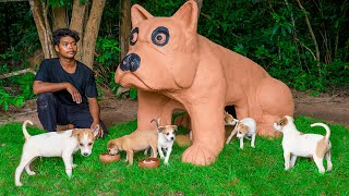 Build Mud Dog House For Kutta Puppies In Pug Dog Style