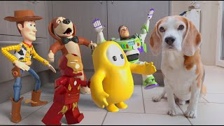 Dogs vs Real Life Animations Compilation : Funny Dogs Louie & Marie
