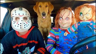 Chucky Surprises Jason & Puppy with Car Ride Chase!