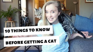 10 things I WISH I knew BEFORE getting a cat/kitten!