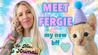 I Adopted Fergie, a Kitten with Kidney Disease