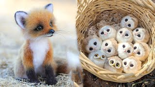 Cute baby animals Videos Compilation cute moment of the animals – Cutest Animals #14